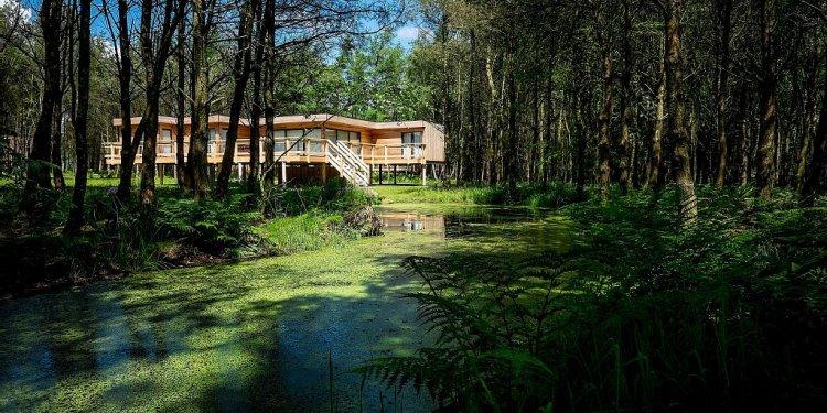 Unique Luxury Treehouses